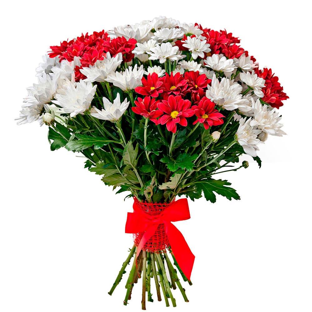 бывала друзей картинки роз хризантем печальной